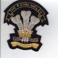 The Royal Welsh veteran Blazer badge